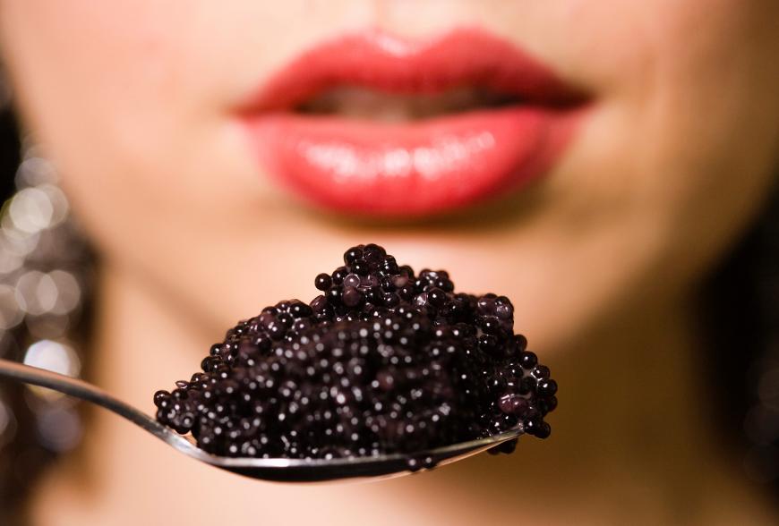 Calvisius Caviar: caviale, storione, salmone e tanto pesce gourmet.